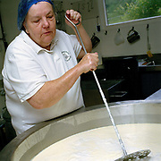 Kathy Biss, cheesemaker mixing milk for Crowdie cheese at the West Highland Dairy in the village of Achmore by the Kyle of Lochalsh in the Scottish Highlands, UK. Owned by Kathy and David Biss, the West Highland Dairy was established in 1987 and as well as managing their own small commercial dairy business, they have taught a great number of prospective cheesemakers during the last 20 years.