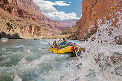 United States, Arizona, Grand Canyon National Park, group paddling a whitewater raft through rapids on Colorado River.