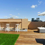 Bergen Ave Sunny Modern Roof Deck