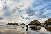 See Bird Rocks and other sea stacks from scenic Chapman Beach, which is just north of Ecola Creek, the biggest stream running through the town of Cannon Beach, on the Oregon coast, USA.