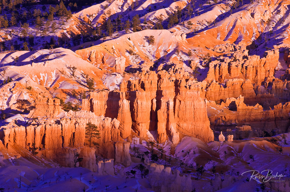 Evening light on snow-dusted rock formations below Bryce Point, Bryce Canyon National Park, Utah