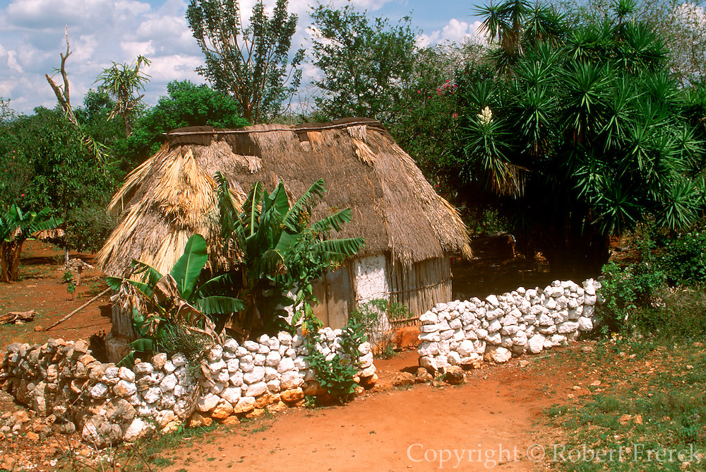 MEXICO, YUCATAN, MAYAN 'Palapa' home with thatched roof