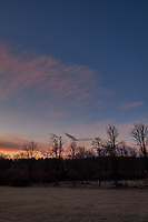 Winter Backyard Dawn Sky in New Jersey. Image 6 of 8 taken with a Fuji X-T1 camera and 16 mm f/1.4 lens (ISO 200, 16 mm, f/8, 1/60 sec). Raw images processed with Capture One Pro and the composite generated using AutoPano Giga Pro.