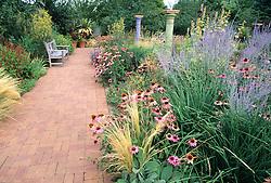 At the Denver Botanic Garden  in Denver, Colorado, a brick pathway lends a sense of balance and elegance to a garden bursting with Purple Coneflower ( Echinacea purpurea,) Russian Sage (Perovskia atriplecifolia) and other colorful perennials.