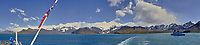 Panorama While Departing South Georgia on Christmas Day From the Deck of the MS Fram. We just passed the HMS Dragon (D35). In camera panorama taken with a Fuji X-T1 camera and 23 mm f/1.4 lens (ISO 200, 23 mm, f/16, 1/125 sec). JPG image processed with Capture One Pro, Focus Magic, and Photoshop CC.