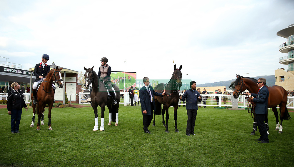 (Left to right) Equine superstars, William Fox Pitt on Chilli Morning, Valegro, Sprinter Sacre and Big Star pose in the paddock during the April Meeting at Cheltenham Racecourse