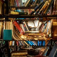 Cossitt Library - Memphis, TN
