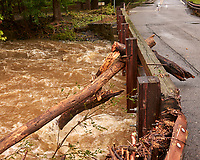 Tropical Storm Henri aftermath. Walk from my house to the Rock Brook bridge. Image taken with a Leica CL camera and 23 mm f/2 lens.