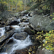 Fall Scenics,small stream surrounded by fall color in Beartooth mountains. Montana.