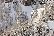 snowy canyon near White Pass, Wenatchee National Forest, Cascade Range, Washington, USA