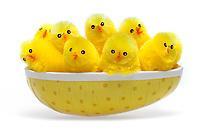 En gjeng med påskekyllinger samlet i et påskeegg.