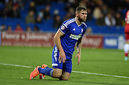 Daryl Murphy of Ipswich Town looks on. Skybet football league championship match, Cardiff city v Ipswich Town at the Cardiff city stadium in Cardiff, South Wales on Tuesday 21st October 2014<br /> pic by Andrew Orchard, Andrew Orchard sports photography.