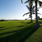 Hilton Cancun golf course. Cancun, Quintana Roo. Mexico