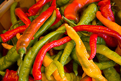 colorful hot peppers