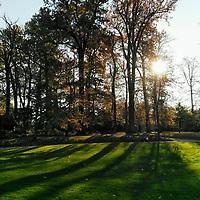 L'après-midi au soleil en novembre dans un des nombreux parcs boisés autour de Paris. Que demander de plus ?<br /> <br /> A sunny November afternoon in one of the many wooded parks around Paris. What else could one ask for?