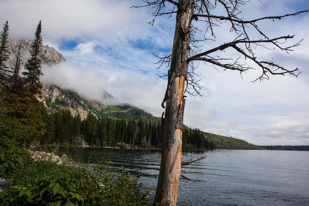 Jenny Lake Trail, at Grand Teton National Park, Wyoming