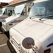 A row of parked US Postal Service trucks outside a post office.