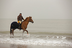 Le Jeune Philippe, (BEL) in the snow<br /> Knokke 2011<br /> © Dirk Caremans