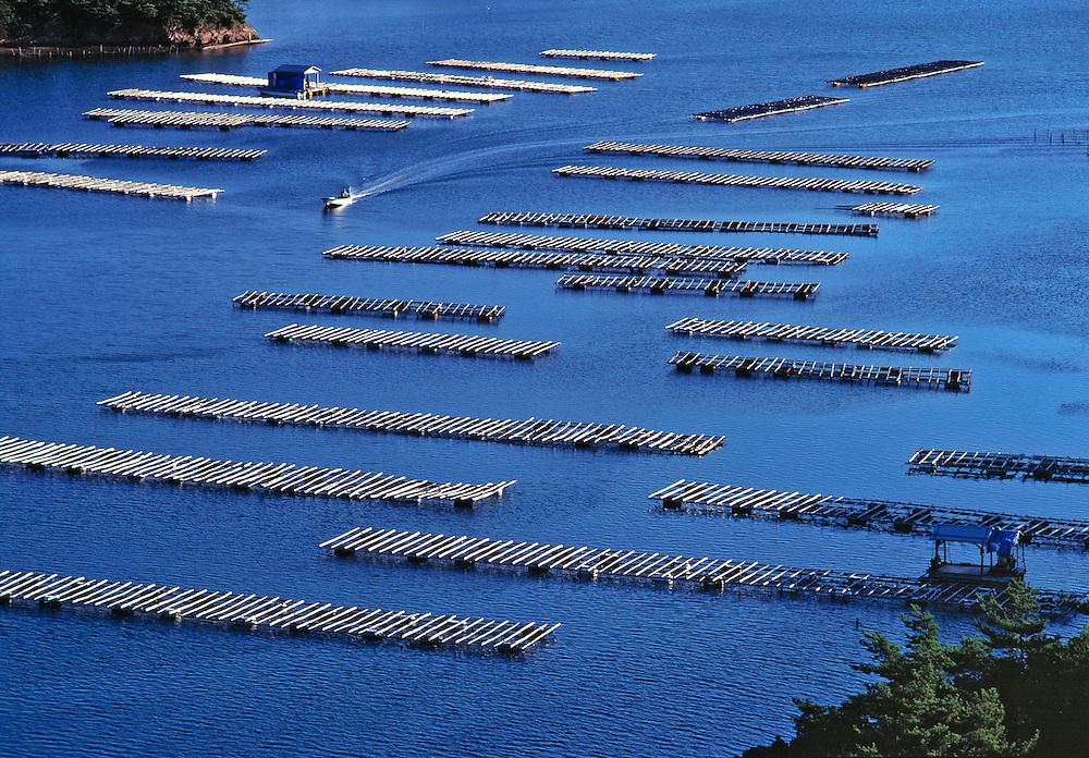 A small boat patrols the oyster beds at Kashikojima, Honshu, Japan.
