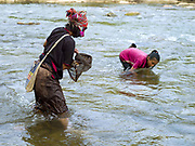 An Akha Ya-er woman and her daughter from Ban Houay Phod, Phongsaly province, Lao PDR collect crustaceans from under the rocks with a net in the Nam Pa river (a tributary of the Nam Ou) in Pak Nam Noi. For families living away from the main roads and markets, food caught or collected from the wild, especially edible plants and small animals still make up fifty per cent of their diet.  Nature's bounty in providing for the Lao may be plentiful, but this does not mean that the task of growing and finding enough food for family subsistence and maintenance is easy. It is a major preoccupation of rural families and takes the bulk of time and energy of every man, woman and child.