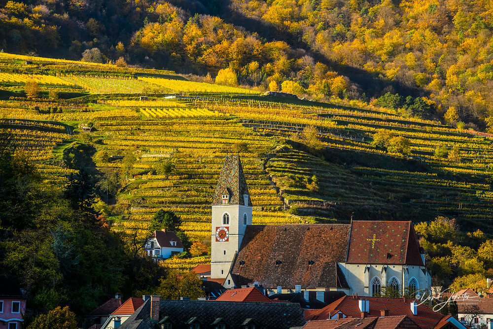 Autumn in the Wachau Valley- Pfarrof Catholic Church, vinyards and town buildings, Wachau Valley, Spitz, Lower Austria, Austria