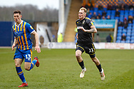 Shrewsbury Town defender James Bolton (13) is chased by Wimbledon midfielder Mitch Pinnock (11)  during the EFL Sky Bet League 1 match between Shrewsbury Town and AFC Wimbledon at Greenhous Meadow, Shrewsbury, England on 2 March 2019.