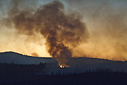 Greeley Hill, California-- July 30, 2008-Telegraph Fire-Wildfires Threaten Yosemite National Park.Burn out continues on Division N.  Division N is in the north east portion of the fire in the Stanislaus National Forest and North of the Merced River. .Photo by Al GOLUB/Golub Photography