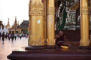 A monk reads during sunset in the Shwedagon Pagoda, the Golden Pagoda is the most sacret pagoda in Myanmar, Yangon, Burma.<br /> Note: These images are not distributed or sold in Portugal