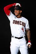SCOTTSDALE, ARIZONA - FEBRUARY 21: 2020 MLB Photo Day creative station. (Photo by Sarah Sachs/Arizona Diamondbacks)