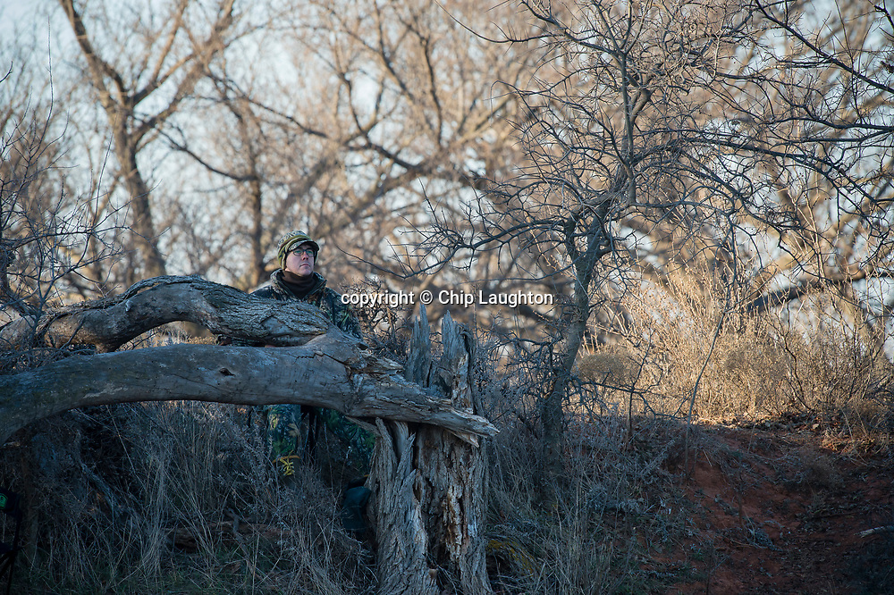 waterfowl hunting stock photography photo image