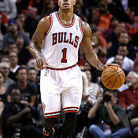 29 January 2012: Chicago Bulls point guard Derrick Rose (1) brings the ball upcourt during the Miami Heat 97-93 victory over the Chicago Bulls at the AmericanAirlines Arena, Miami, Florida, USA.