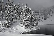 Trees are shrouded in low clouds and heavy snow on the shore of Boulder Lake, Glacier Peak Wilderness, Washington.