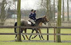 Van Dijk Mark <br /> Stal Nieuwenrode 2003<br /> Photo © Dirk Caremans
