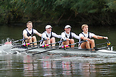 Worcester Small Boats Head 2016