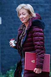 © Licensed to London News Pictures. 23/11/2016. London, UK. Environment secretary ANDREA LEADSOM  attends a cabinet meeting in Downing Street before the autumn statement announment on Wednesday, 23 November 2016. Photo credit: Tolga Akmen/LNP
