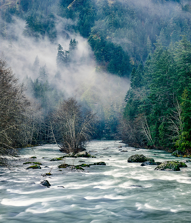 Elwha River and low lying clouds, winter, overcast light, Olympic National Park, Washington, USA