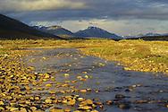 Snake River, Yukon