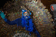 New York, NY - 31 October 2015. A man in a bright, feathered  peacock costume in the annual Greenwich Village Halloween Parade.