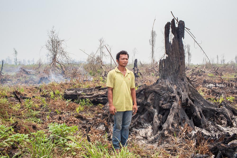 Riau - February 28, 2014.  A portrait of Pak Harianja at a burned farm land.  <br /> <br /> Profile of Laskar Harianja, a farmer whose pineapple crops were burned by a fire last year.