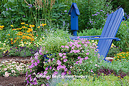 63821-21903 Flower garden with blue Adirondack chair and blue birdhouse.  Butterfly Bushes, Peach & Purple Verbenas, Yellow Lantana (Lantana camara), Raspberry Blast petunias & Diamond Frost Euphorbia in blue pot, Karl Forster grass, sedums, Marion Co.,