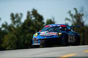 September 30-October 1, 2011: Petit Le Mans at Road Atlanta. 66 Duncan Ende, Peter Ludwig,  Spencer Pumpelly, Porsche 911 GT3 Cup, TRG