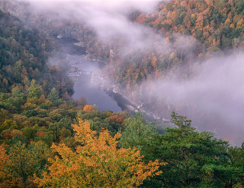 Big South Fork River, autumn, Big South Fork National River, Kentucky, USA
