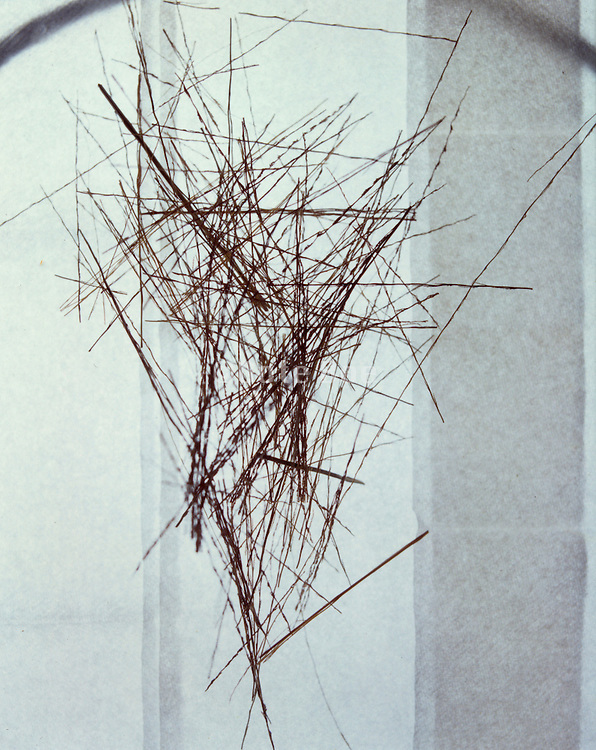Dried grass triangular abstraction
