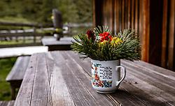 THEMENBILD - herbstliche Bergblumen in einer Vase auf einem Holztisch, aufgenommen am 09. September 2018, Rauris, Österreich // autumnal mountain flowers in a vase on a wooden table on 2018/09/09, Rauris, Austria. EXPA Pictures © 2018, PhotoCredit: EXPA/ Stefanie Oberhauser