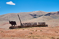 Tadjikistan, Asie centrale, Gorno Badakhshan, Haut Badakhshan, le Pamir, la Haute Route du Pamir, frontiere du Kirghizistan // Tajikistan, Central Asia, Gorno Badakhshan, the Pamir, the Pamir highway, Kirghizstan border