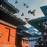 Pigeons fly between pagoda roofs in Kathmandu Durbar Square, Nepal, 1986.