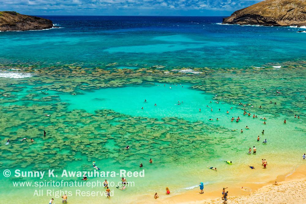 Turquoise ocean, coral and snorkelers at Hanauma Bay. Honolulu, Oahu Island, Hawaii.