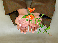 """Right action is completely new<br /> born in an untouched presence<br /> unfolding into infinity."""" -Elena Ray<br /> <br /> Asian man's hand holding blossoms"""
