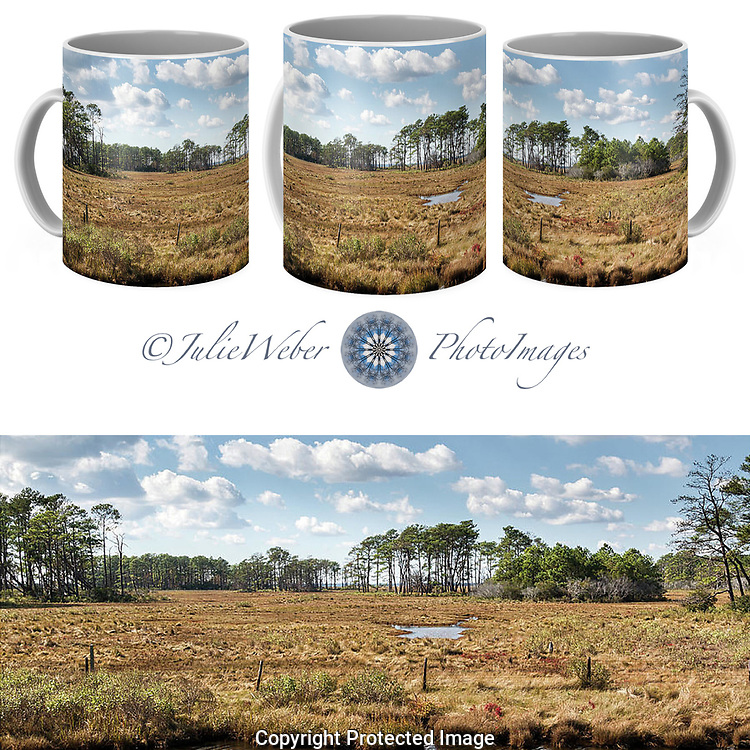 Mug Showcase 28 Shop here:  https://2-julie-weber.pixels.com/featured/wetlands-4-julie-weber.html?newartwork=true