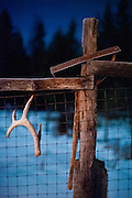Antler and garden tool on fence at night